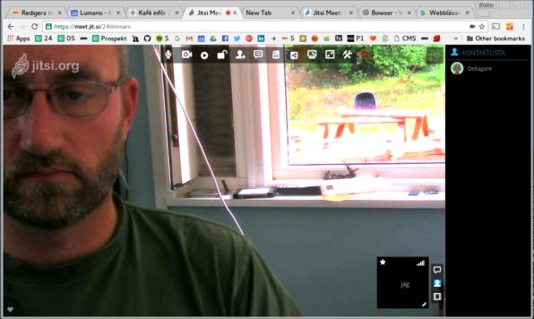 Skärmbild på nätmöte i Jitsi.